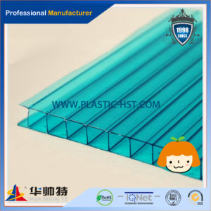 100% Lexan Polycarbonate PC Hollow Sheet (HST PC01) pictures & photos