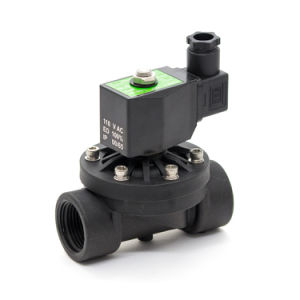 2wp Series Normally Closed Solenoid Valve pictures & photos