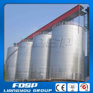 Professional Design 10000 Ton Stainless Steel Silo pictures & photos