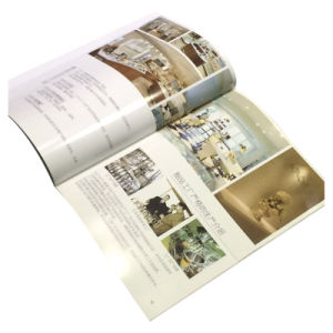 Custom Printing Design Introduction Catalogue for Company pictures & photos