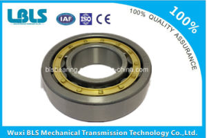 Nu226e/C3 High Precision Cylindrical Roller Bearing pictures & photos