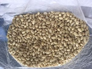 Export Good Quality Fresh Chinese Peanut Kernels pictures & photos
