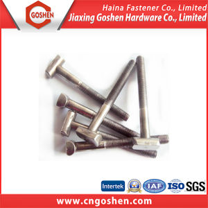 Stainless Steel T Head Bolt with Half Thread pictures & photos