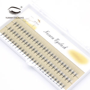 Cheap Best Single 5D Thick Eyelashes Extensions pictures & photos