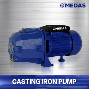 Casting Iron Pump DP-255 pictures & photos