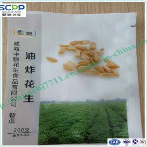 Flat Pouches Food Plastic Bags pictures & photos