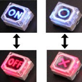 Long Life Times Key Switch with LEDs