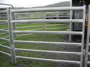 Hot Galvanized 6 Rails Sheep Fence Welded Sheet Metal Farm Work pictures & photos
