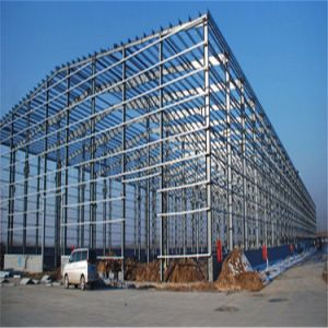 Large Span Steel Frame Structure Builidng with ISO: 2008 Certificate pictures & photos
