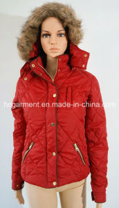 Sports Wear Warm Down Hoody Jacket & Coat for Women/Lady pictures & photos