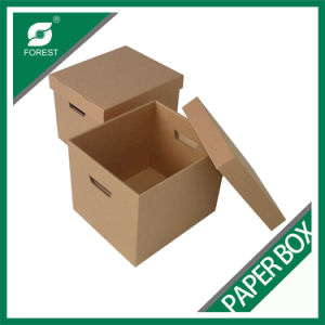 Corrugated Color Paper Foldable Storage Box Customized (FOREST PACKING 008) pictures & photos