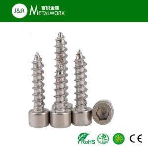 Stainless Steel Allen Hex Socket Tapping Screw (SS304 SS316) pictures & photos