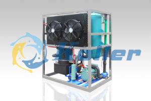 1 Ton/Day Tube Ice Machine with Air-Cooling Way TV10 pictures & photos