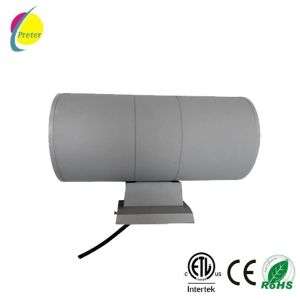 Purple 2*12W Round LED Light Outdoor LED Light pictures & photos