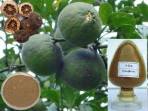 Most Popular Citrus Aurantium Extract Powder pictures & photos