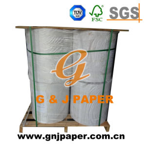 Vrigin Wood Pulp Mf Tissue Paper in Roll pictures & photos