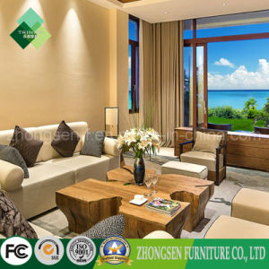 American Modern Style of Beech Luxury Living Room Furniture (ZSTF-26) pictures & photos