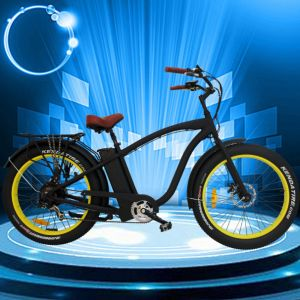 MTB Fat Tire Electric Bicycle with 500W Motor pictures & photos