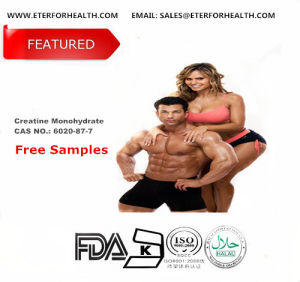 Creatine Monohydrate Amino Acids Sports Nutrition Bodybuilding Supplement