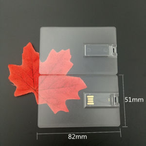 Best Business Promotional USB Card 1GB 2GB 4GB 8GB Card USB Stick (TF-0423) pictures & photos