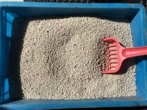 High Quality Bentonite Cat Litter/Pet Litter pictures & photos