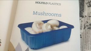 FDA Approved Food Grade Plastic Fresh Mushroom Packing Box pictures & photos