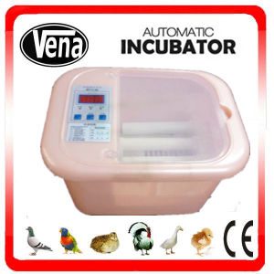 Fully Automatic Chicken Egg Incubator for 12 Eggs pictures & photos