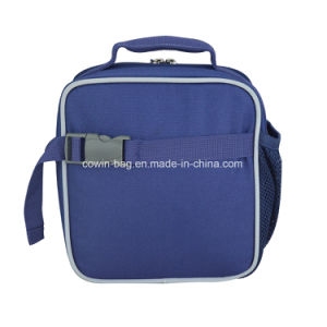 Promotional Simple Lunch Picnic Drink Fruit Insulated Cooler Bags pictures & photos