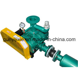 High Efficiency Industrial Roots Pump pictures & photos