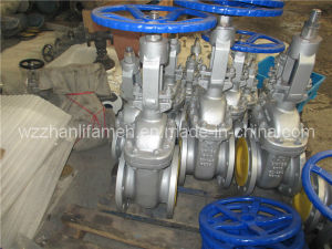 Stainless Seel 304/316/Cast/Carbon Steel DIN Gate Valve-F4
