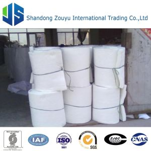 128 Density (kg/m) and Alumina Silicate Insulation Ceramic Fiber Blanket pictures & photos