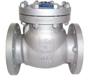 A216 Wcb Flanged Check Valve (ASTM/ANSI 150LB-300LB) pictures & photos