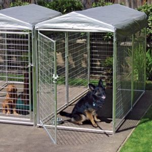 Dog Kennel Chain Link Kennel Welding Mesh Kennel pictures & photos