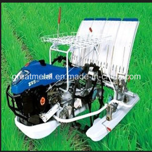 Paddy Rice Transplanter Machines (2ZT-8238BG) pictures & photos