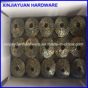 Electro Galvanized Smooth Shank Coil Roofing Nail Wholesale pictures & photos