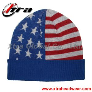 American Flag Hat (XT-W005) pictures & photos