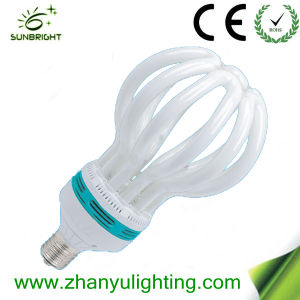 CE 5u Special Energy Saving Lamp pictures & photos