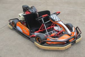 Double Seats F1 Racing Go Karting (GK200-R3) pictures & photos