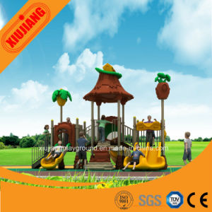 Standard Durable Outdoor Playground Equipment for Amusement pictures & photos