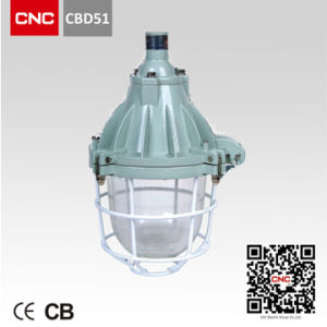 Well Sold Explosion Proof Light Halogen Light (CBD51) pictures & photos