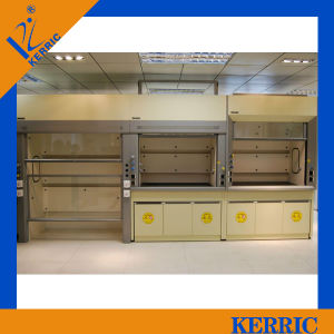 Customized Laboratory Furniture Lab Fume Hood Manufacturers for School