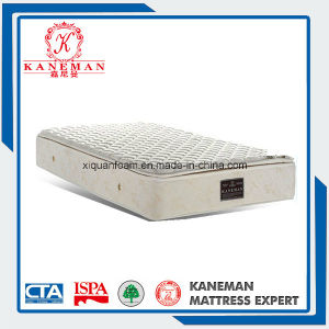 Hard Feeling Coir Spring Mattress for Oversea Chinese People pictures & photos