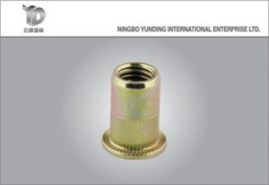 Blind Rivet Nutchina Manufacturer Factory Made Flat Head Blind Rivet Nut with Excellent Quality pictures & photos
