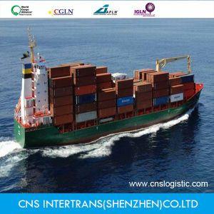 Sea Freight / Ocean Shipping From Shenzhen / Guangzhou / Shanghai China to Itapoa/Sepetiba/Salvador/