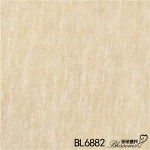 Building Material Porcelain Floor Tiles From China (600X600mm) pictures & photos