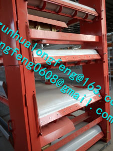 Automatic Poultry Cage for Broiler pictures & photos