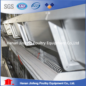 Standard Steel Wire Chicken Egg Cage/ Poultry Farm Equipment pictures & photos