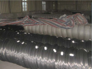 SAE52100 Oil Tempered Spring Steel Wire (6MM-22MM) pictures & photos