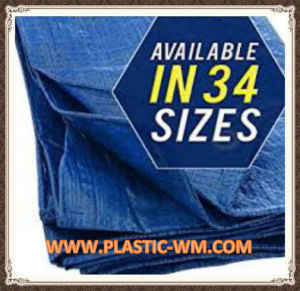 Waterproof PE Tarpaulin Various Size Available pictures & photos