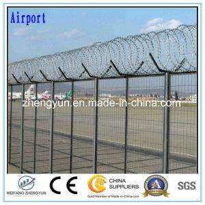 Security Fence Razor Blade Barbed Wire pictures & photos